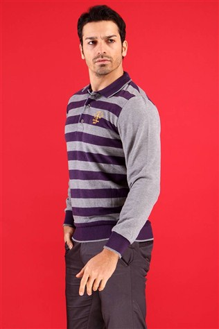 Afm 34813 Men's Pourple Sweater