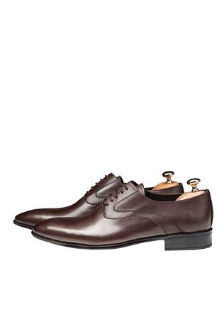 Men's Elegant Shoes Brown 202125