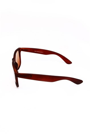 Polarized 870 Bordeaux Sunglasses