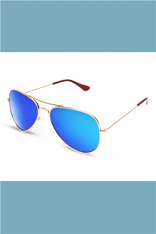 Polarized 901 Gold/blue Sunglasses