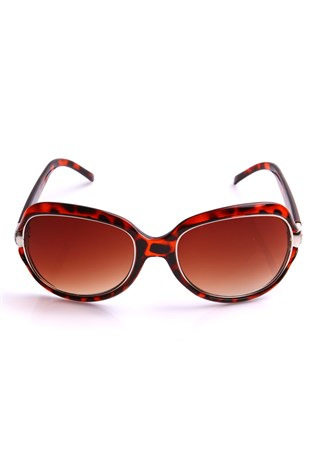 Y-london Yl12-131 C2 Brown Sunglasses